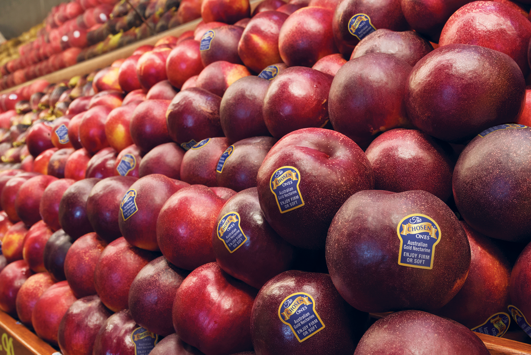 The chosen ones nectarines in a grocery store