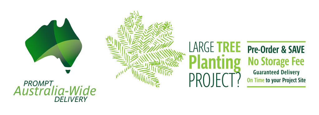 Large Planting Project? Pre-order. We Store It. You Save.