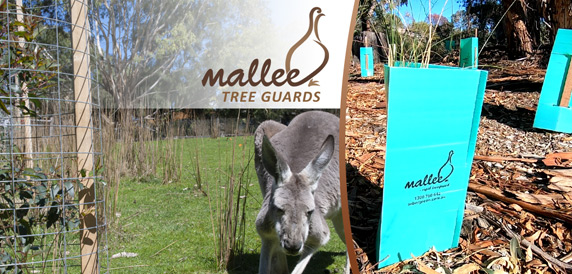 Mallee Mesh, Mallee Corflute Tree Guards and Hardwood Stakes