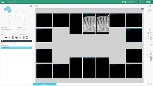 GoDR Vet Full Mouth Series Screenshot