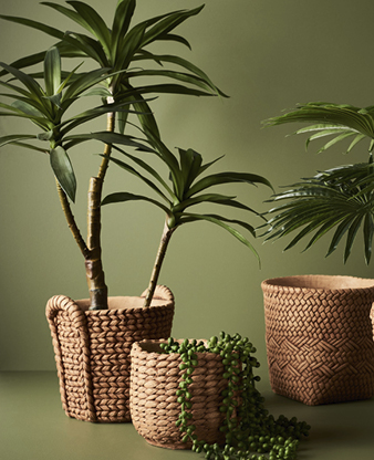 Floral Interiors Collection Artificial Plants