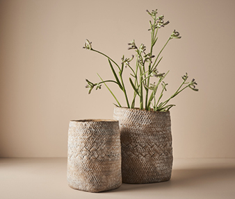 Floral Interiors Artificial Plants Kangaroo Paw Creative Living