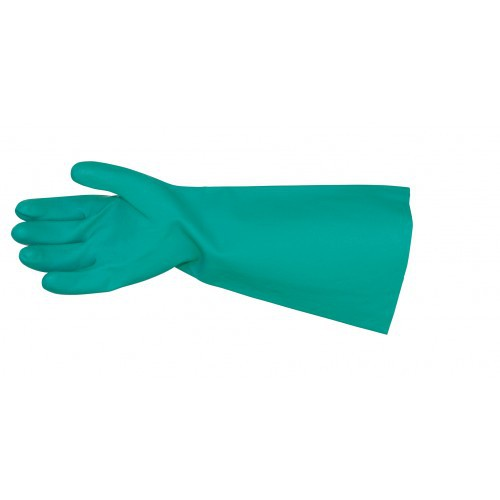 Gloves EN420 Standard