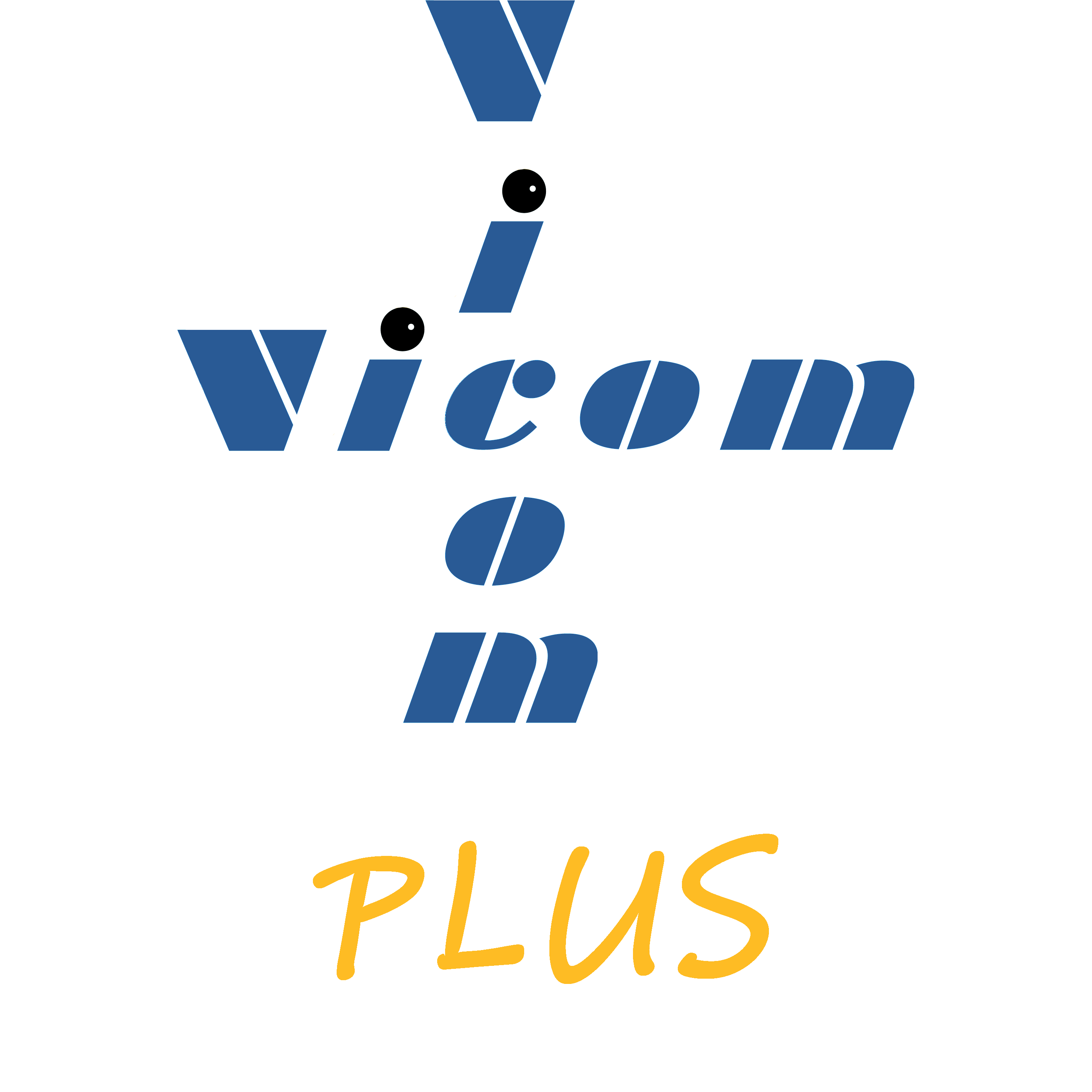Services - Vicomplus