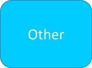 Optical Other button